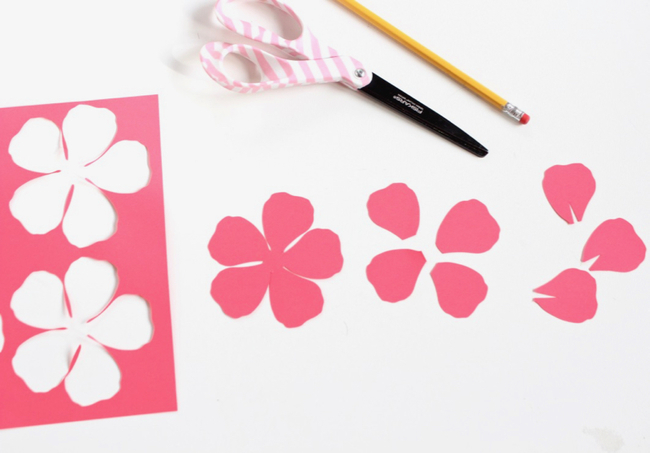 Paper Flower Cut Outs